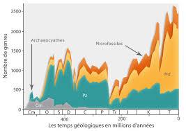 Biodiversité et crises biologiques